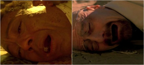 3) There is a hidden parallel between Gus and Walt's stories of vengeance